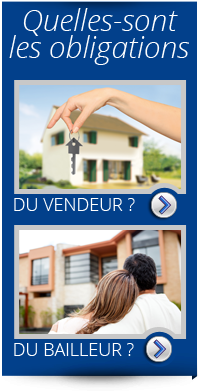 Diagnostic immobilier Lunéville 54300